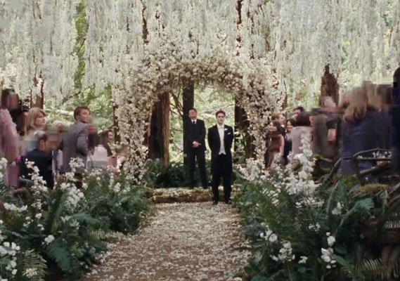 Twilight breaking dawn ceremony picture