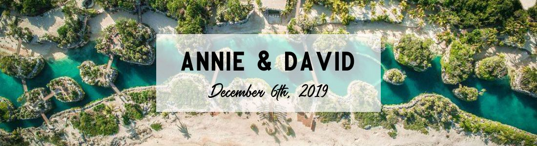 Annie and David Header